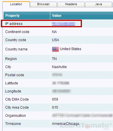 Using analyzemy.net to discover your public IP address