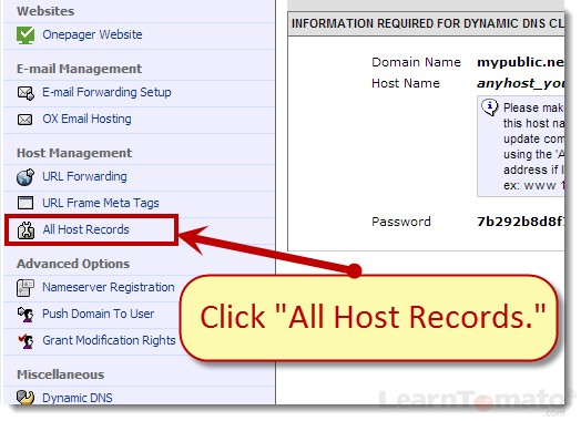 Click All Host Records to display All Dynamic DNS host records for this domain name.